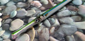 FishUs Don Belone garfish imitation sinking lure...23cm 25g Green Back..